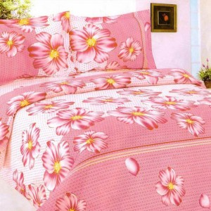 Bed Sheet Set4